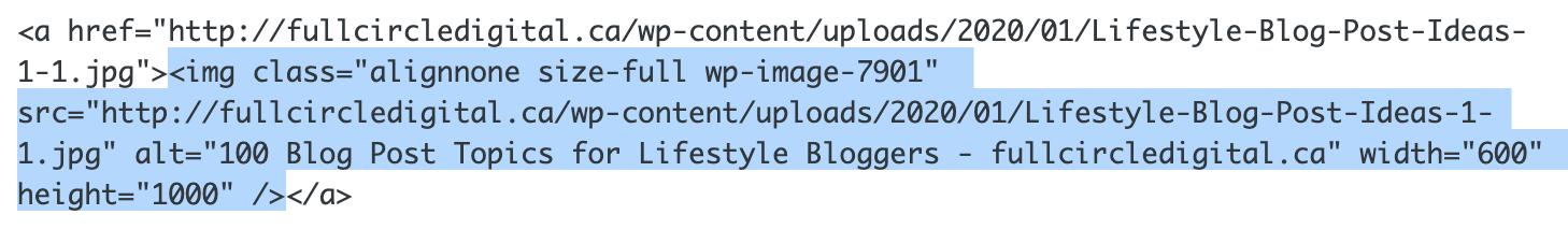 image code in WordPress