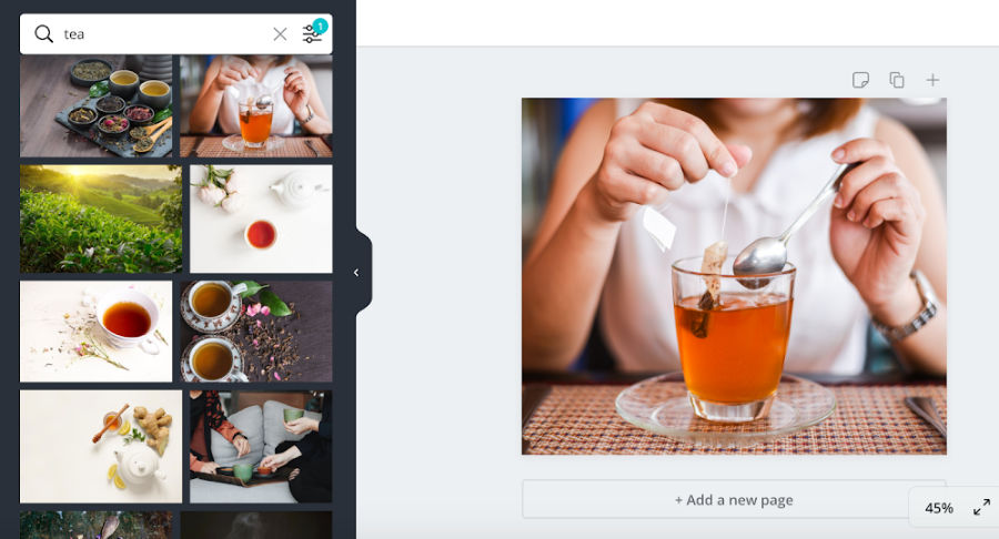 Canva Pro photo search example
