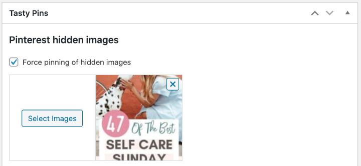 Hide Pinterest image in Tasty Pins plugin